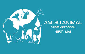 Amigo Animal - 13 de Abril de 2019